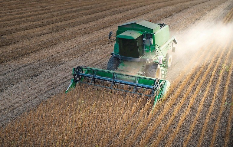 Harvesting_of_soy_bean_field_with_combine